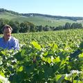 Champagne Régis Desbleds - Régis Desbleds