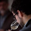 Champagne Goutorbe Bouillot - Bastien Papleux
