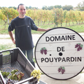 Domaine de Pouypardin - Stéphane Picarelli