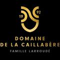 Domaine de la Caillabère - Jean-Marc Larroudé