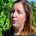 Domaine Guinand - Sophie Guinand