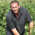 Domaine Ludovic Charvet - Ludovic Charvet