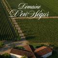 Domaine d'En Ségur - Domaine  D'En Segur