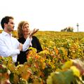 Champagne VIRGINIE T. - Virginie Taittinger et Ferdinand Pougatch