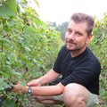 Champagne Michel Hoerter - Hoerter Jean-Philippe